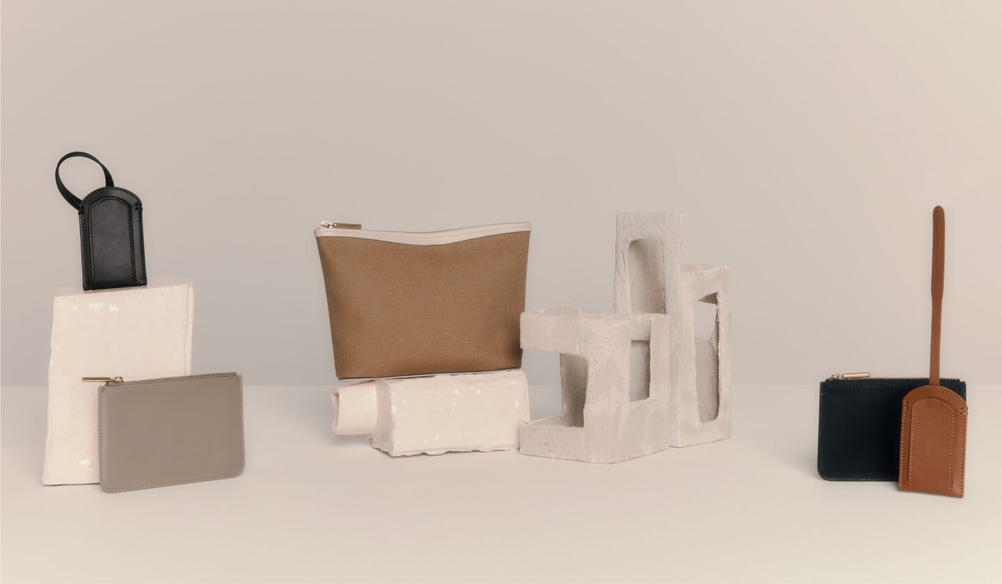 Collection of cuyana small leather goods