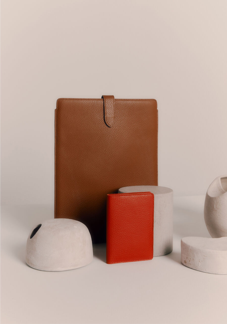 Cuyana Laptop Sleeve and Passport Case