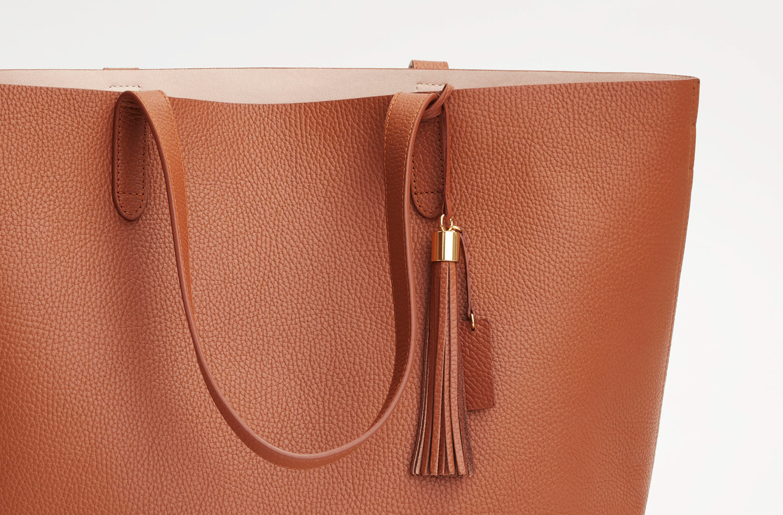 Cuyana Classic Structured Leather Tote with Leather Bag Tassel