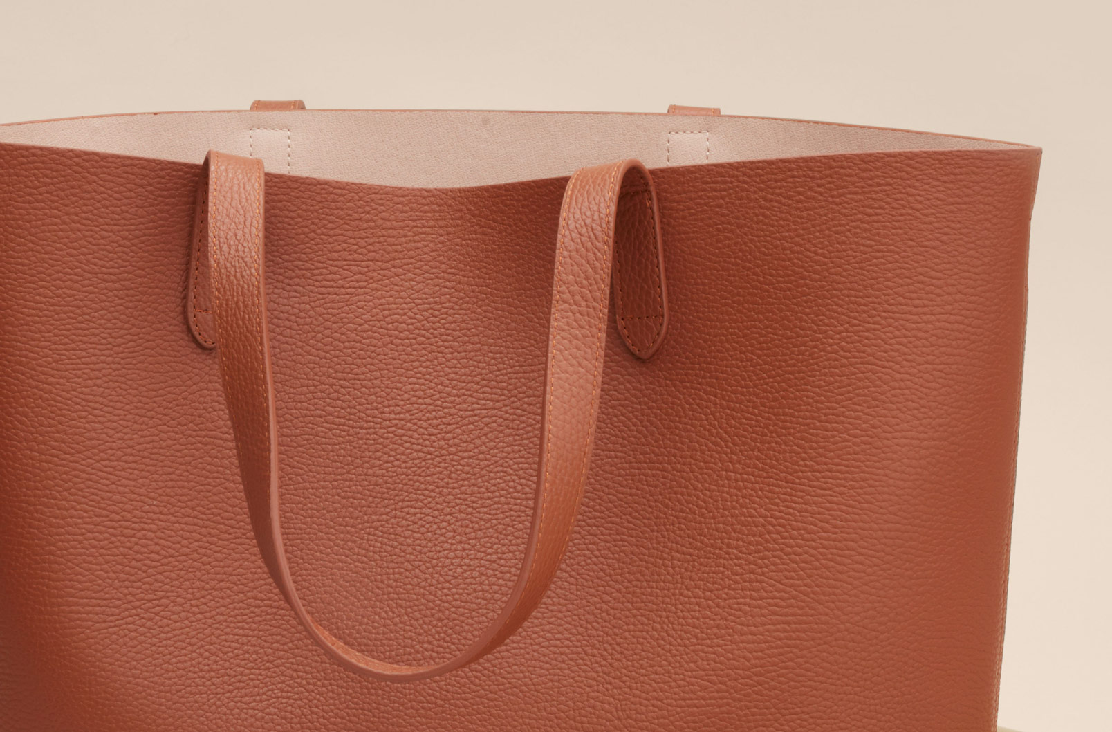 Cuyana Classic Structured Tote in Caramel Blush
