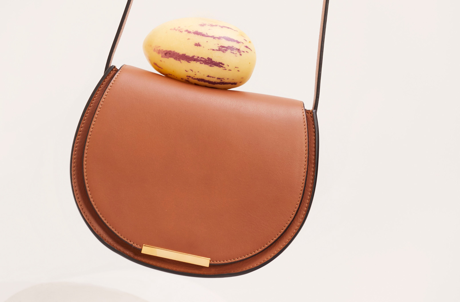 Cuyana Mini Saddle Bag in Caramel with fruit